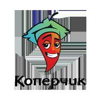 Koperchik_200_200